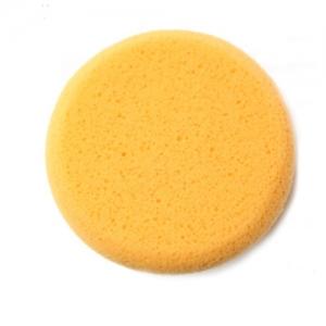 Hydra Sponge - klein