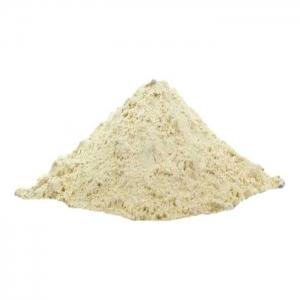 Formenhartgips - 1 kg